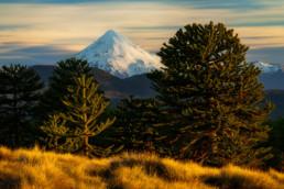 Vulkan Lanin Araukarien Huerquehue-Nationalpark Chile
