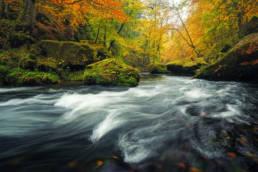 Deutschland Sächsische Schweiz Kirnitzsch Herbst